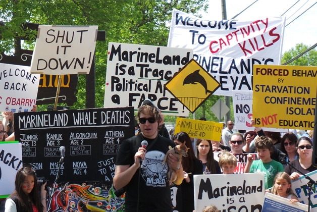 Marineland Protests