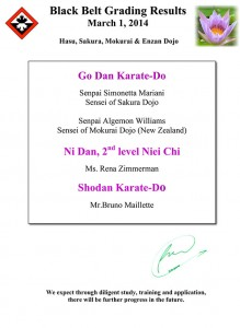 adult karate grading results