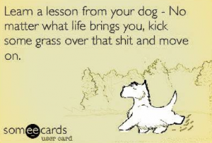 lesson_from_dog