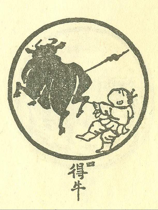 bull-4